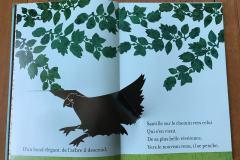 03-corbeau