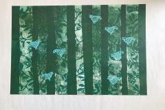13-Paysages