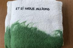15-et_si_nous_allions
